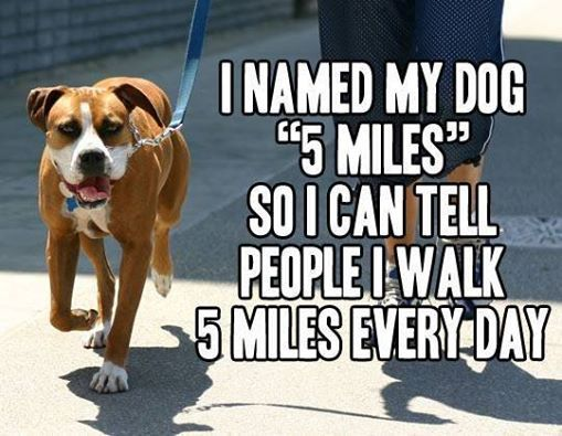 "I Walk My Dog ""5 Miles"""